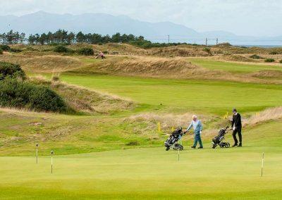 Ayrshire Golfing